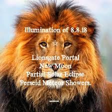 energy lion