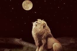 lion and the moon