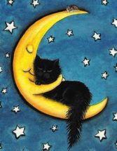 482c2207d5f31874c657923c0fc12b41--cat-stuff-black-cats