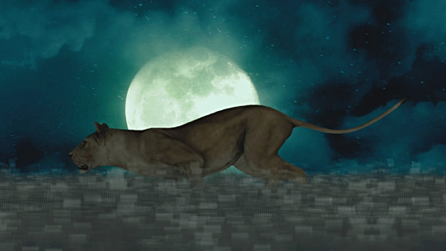 Female Lion Running Through the Night on a Full Moon Background