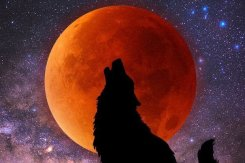 super-blood-wolf-moon-2019-uk-753911